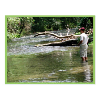Fly Fishing in Dry Run Creek, Arkansas Postcard