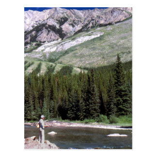 Fly fishing in the Alberta Rocky Mountains. Postcard
