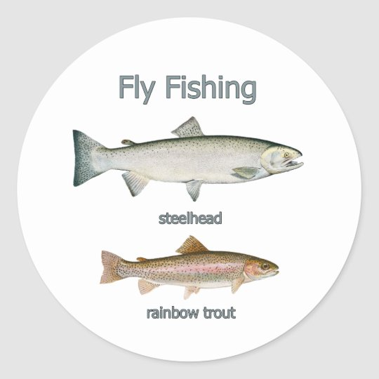 Fly Fishing Rainbow Trout - Steelhead Classic Round Sticker
