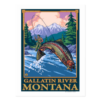 Fly Fishing Scene - Gallatin River, Montana Postcard