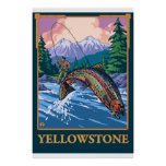 Fly Fishing Scene - Yellowstone National Park Poster