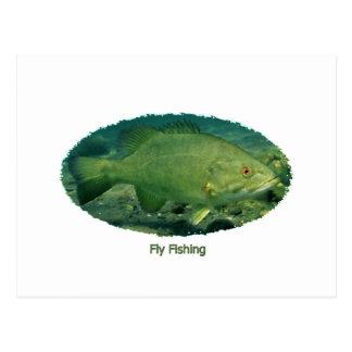 Fly Fishing Smallmouth Bass Logo Postcard