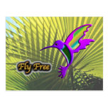 Fly Free #10 Postcard