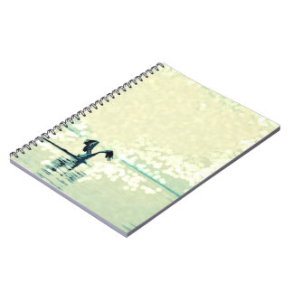 Fly free notebook