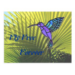 Fly Free Post Card