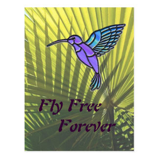 Fly Free Postcard