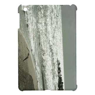 Fly From The Storm Case For The iPad Mini