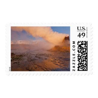 Fly Geyser in the Black Rock Desert Postage