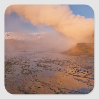 Fly Geyser in the Black Rock Desert Square Stickers