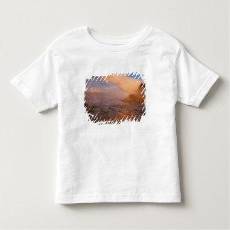 Fly Geyser in the Black Rock Desert Toddler T-shirt