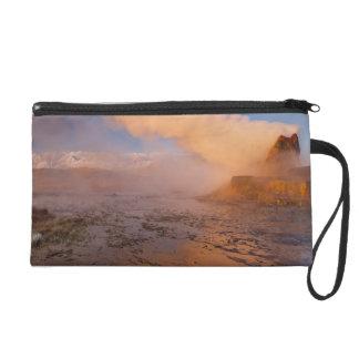 Fly Geyser in the Black Rock Desert Wristlet Purse