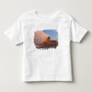 Fly Geyser with snow capped Granite Range 3 Toddler T-shirt