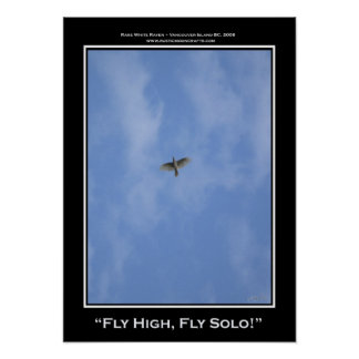 """""""FLY HIGH, FLY SOLO!"""" Photo Print or Poster"""