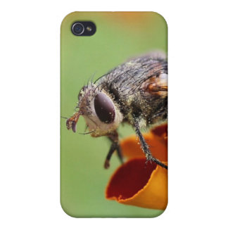 Fly in the Marigolds iPhone 4 case