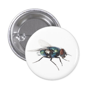 Fly insect pins