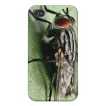 Fly iPhone 4 Cover