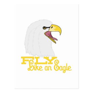 Fly Like an Eagle Postcard