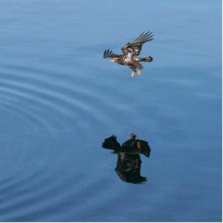 Fly Like An Eagle Statuette
