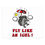 fly like at hedgehogs post card