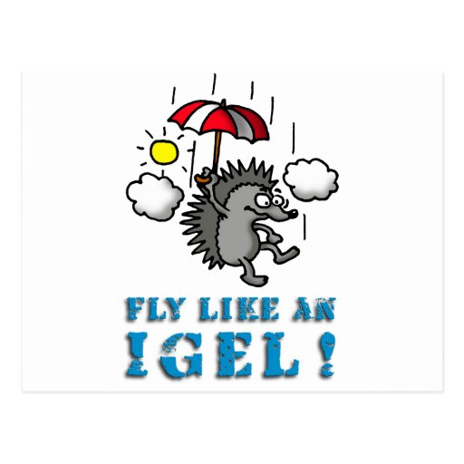 fly like at hedgehogs postcard
