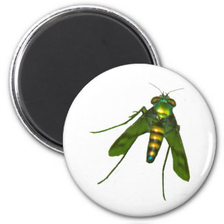 fly magnets