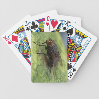 Fly Me to the Moon Bicycle Playing Cards