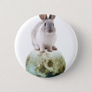 Fly me to the moon pinback button