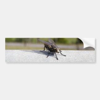 Fly On A Rail Bumper Sticker