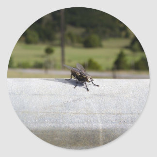 Fly On A Rail Classic Round Sticker