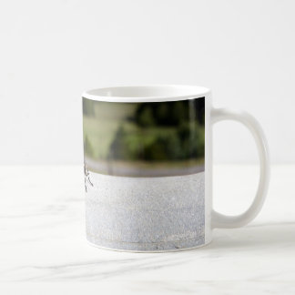 Fly On A Rail Coffee Mug