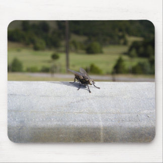 Fly On A Rail Mouse Pad