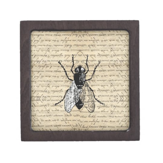 Fly on a vintage background gift box