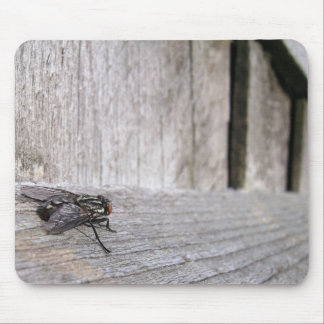 Fly on Fence Mouse Pad