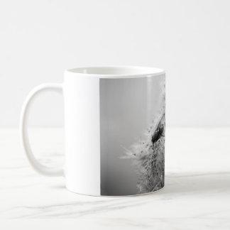 fly on my mug