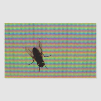 Fly On The Computer Screen Rectangular Sticker