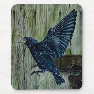 Fly Past Blackbird Mouse Pad
