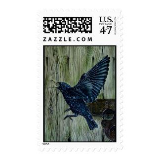 Fly Past Blackbird Postage
