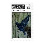 Fly Past Blackbird Postage Stamps