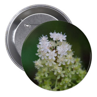 Fly Poison White Wildflower Floral Button