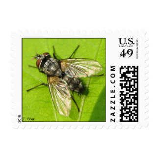 Fly Postage