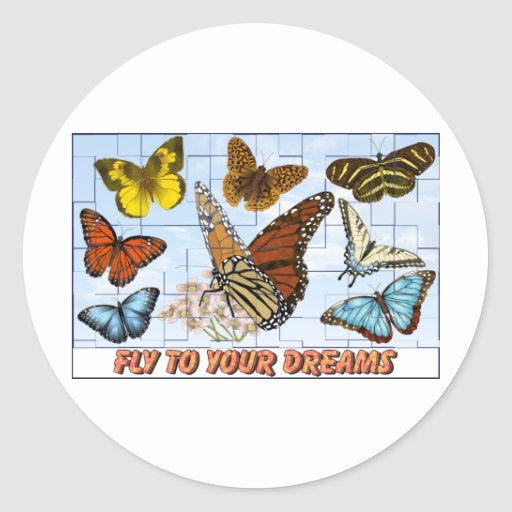 Fly To Your Dreams Classic Round Sticker