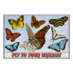 Fly To Your Dreams Print