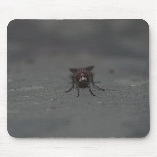 Fly - with Flash Mouse Pad