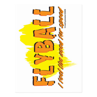 Flyball need for SPEED Postcard
