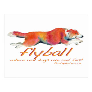 Flyball real dogs postcard