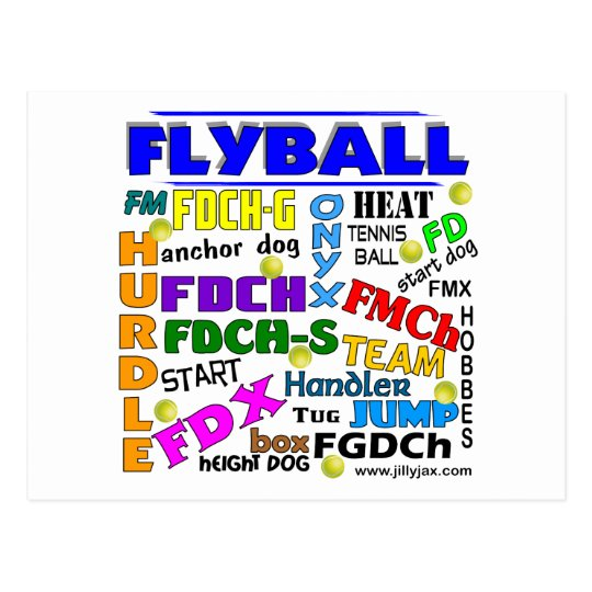 Flyball Terms Postcard