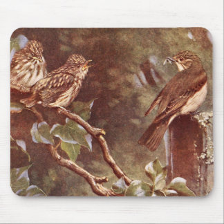 Flycatcher and Young Mouse Pad