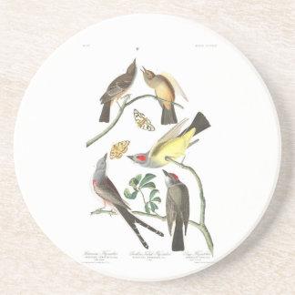 Flycatcher de Arkansaw de la placa 359 de Audubon Posavasos Personalizados