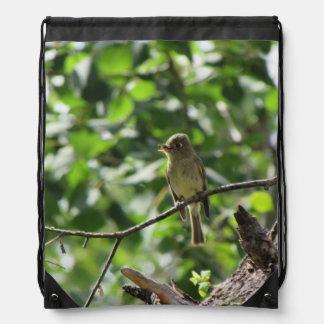 Flycatcher de la Cordillera Mochilas