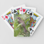 Flycatcher del sauce baraja de cartas